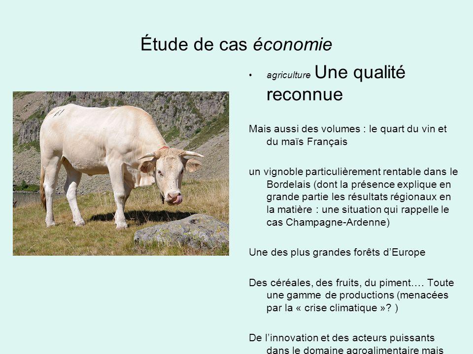 Étude de cas économie agriculture Une qualité reconnue Mais aussi des volumes : le quart du vin et du maïs Français un vignoble particulièrement renta