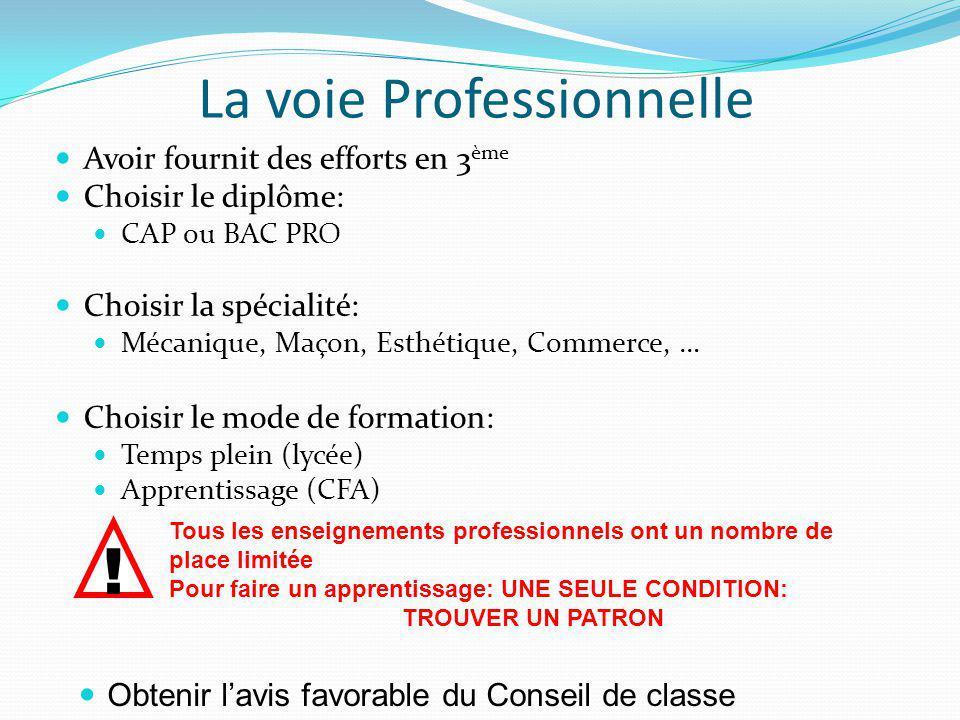 La voie Professionnelle Avoir fournit des efforts en 3 ème Choisir le diplôme: CAP ou BAC PRO Choisir la spécialité: Mécanique, Maçon, Esthétique, Commerce, … Choisir le mode de formation: Temps plein (lycée) Apprentissage (CFA) .