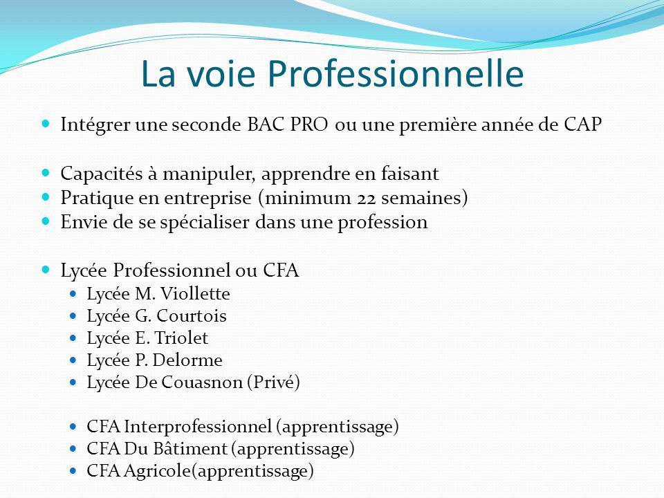 La voie Professionnelle Intégrer une seconde BAC PRO ou une première année de CAP Capacités à manipuler, apprendre en faisant Pratique en entreprise (minimum 22 semaines) Envie de se spécialiser dans une profession Lycée Professionnel ou CFA Lycée M.
