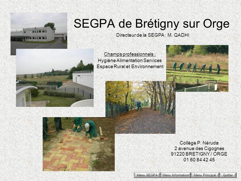 SEGPA de Brétigny sur Orge Collège P. Néruda 2 avenue des Cigognes 91220 BRETIGNY / ORGE 01 60 84 42 45 Directeur de la SEGPA : M. QADHI Champs profes