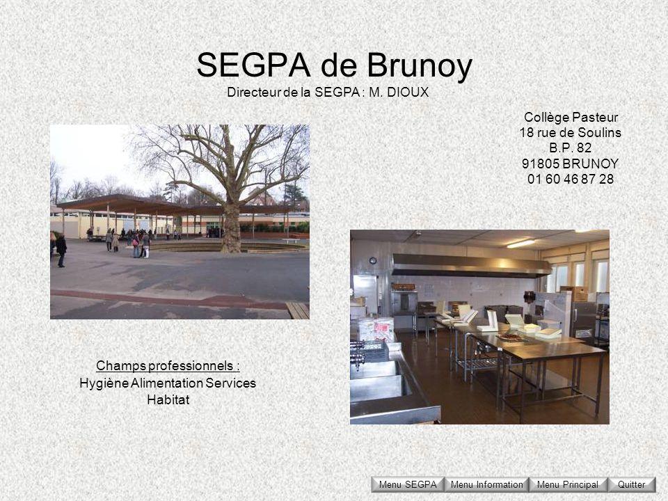 SEGPA de Brunoy Collège Pasteur 18 rue de Soulins B.P. 82 91805 BRUNOY 01 60 46 87 28 Directeur de la SEGPA : M. DIOUX Champs professionnels : Hygiène