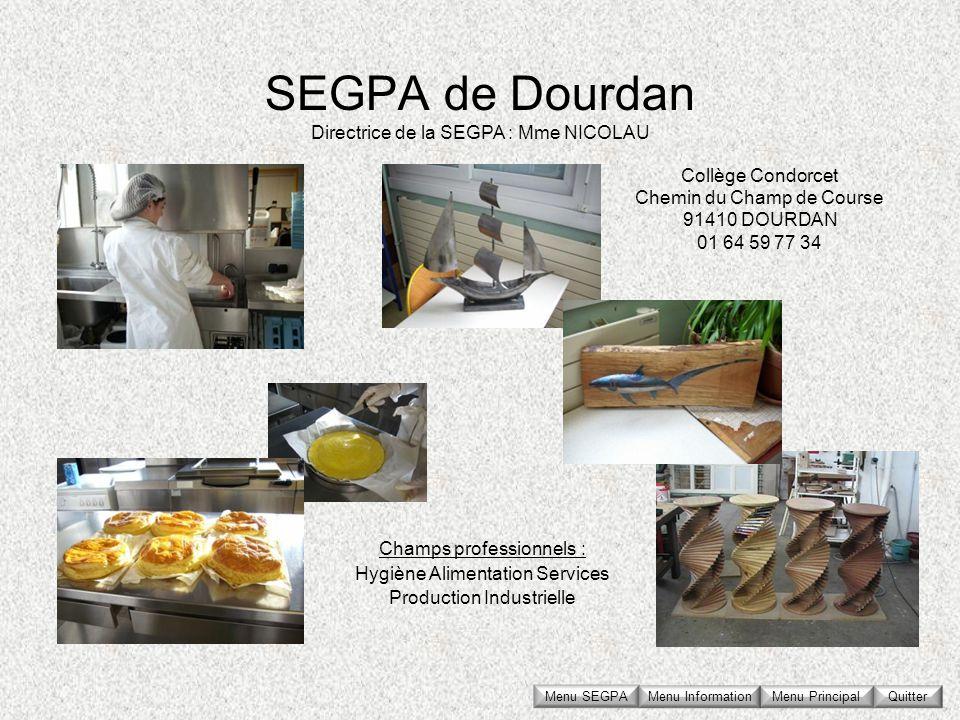 SEGPA de Dourdan Collège Condorcet Chemin du Champ de Course 91410 DOURDAN 01 64 59 77 34 Directrice de la SEGPA : Mme NICOLAU Champs professionnels :