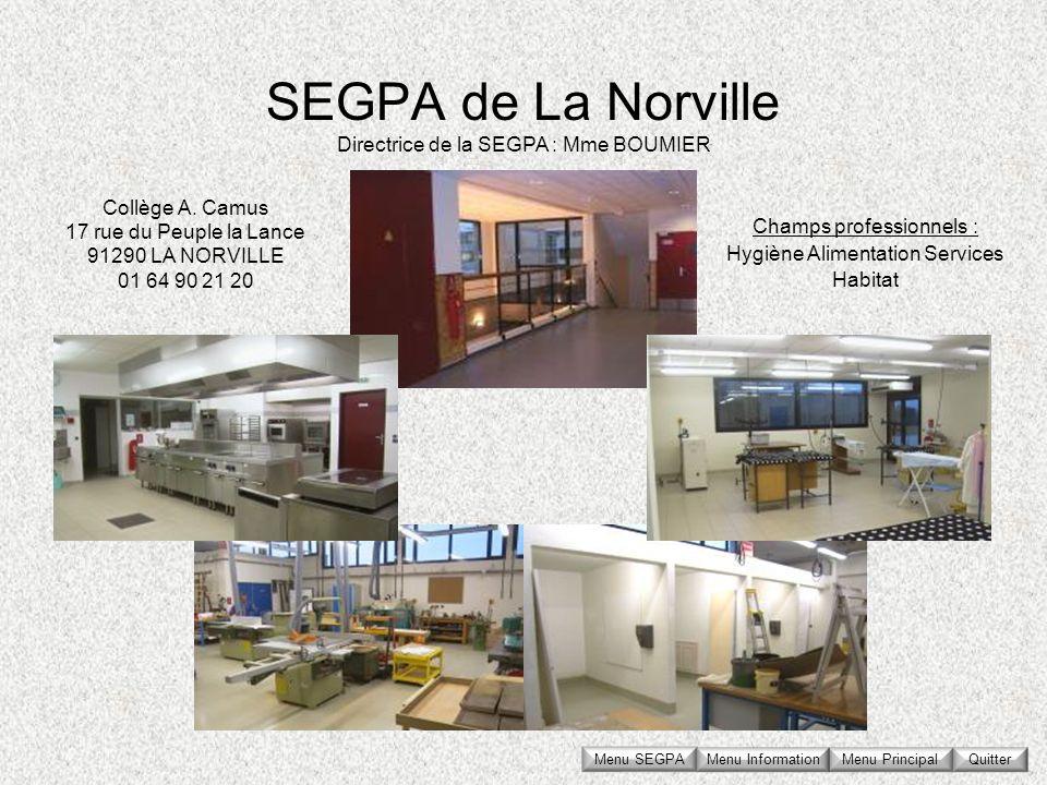 SEGPA de La Norville Collège A. Camus 17 rue du Peuple la Lance 91290 LA NORVILLE 01 64 90 21 20 Directrice de la SEGPA : Mme BOUMIER Champs professio