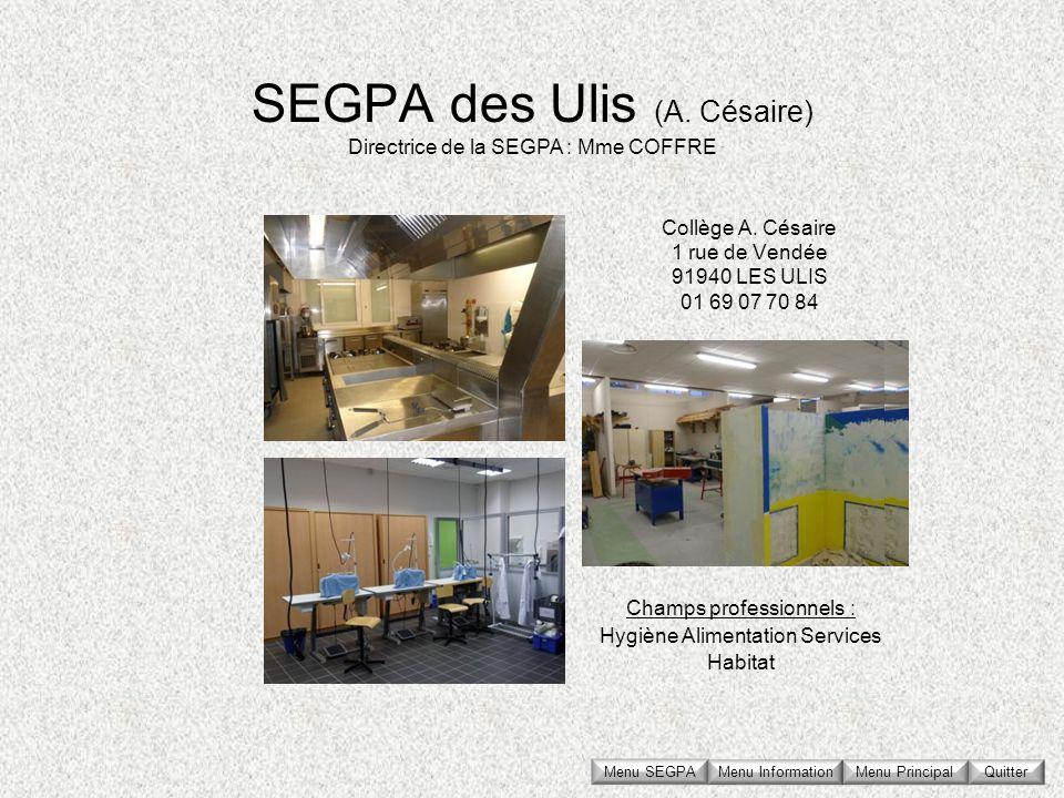 SEGPA des Ulis (A. Césaire) Collège A. Césaire 1 rue de Vendée 91940 LES ULIS 01 69 07 70 84 Directrice de la SEGPA : Mme COFFRE Champs professionnels