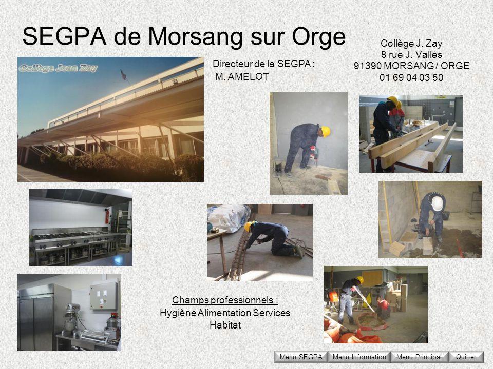 SEGPA de Morsang sur Orge Collège J. Zay 8 rue J. Vallès 91390 MORSANG / ORGE 01 69 04 03 50 Directeur de la SEGPA : M. AMELOT Champs professionnels :
