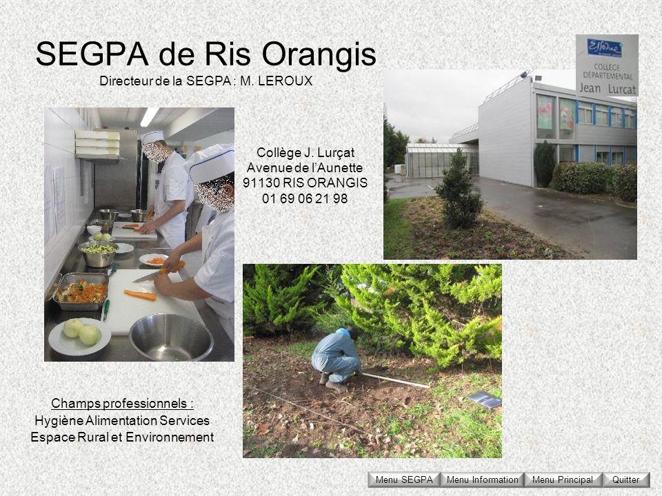 SEGPA de Ris Orangis Collège J. Lurçat Avenue de lAunette 91130 RIS ORANGIS 01 69 06 21 98 Directeur de la SEGPA : M. LEROUX Champs professionnels : H