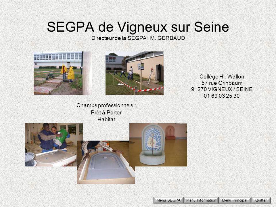 SEGPA de Vigneux sur Seine Collège H. Wallon 57 rue Grinbaum 91270 VIGNEUX / SEINE 01 69 03 25 30 Directeur de la SEGPA : M. GERBAUD Champs profession