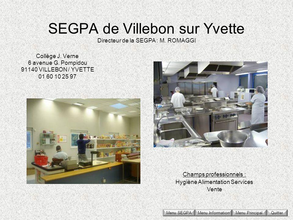 SEGPA de Villebon sur Yvette Collège J. Verne 6 avenue G. Pompidou 91140 VILLEBON / YVETTE 01 60 10 25 97 Directeur de la SEGPA : M. ROMAGGI Champs pr