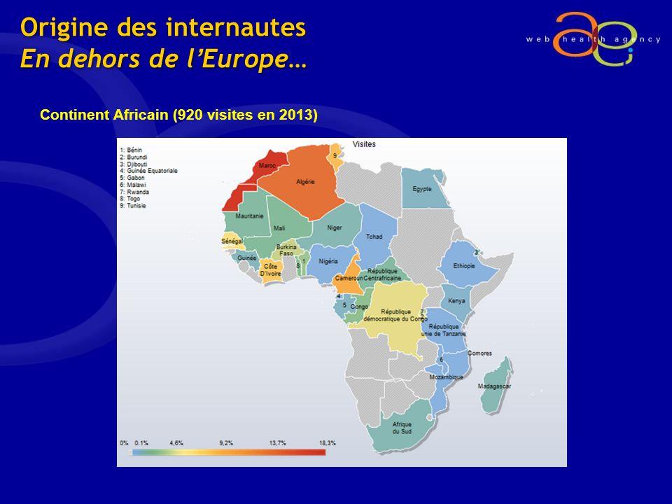 Origine des internautes En dehors de lEurope… Continent Africain (920 visites en 2013)