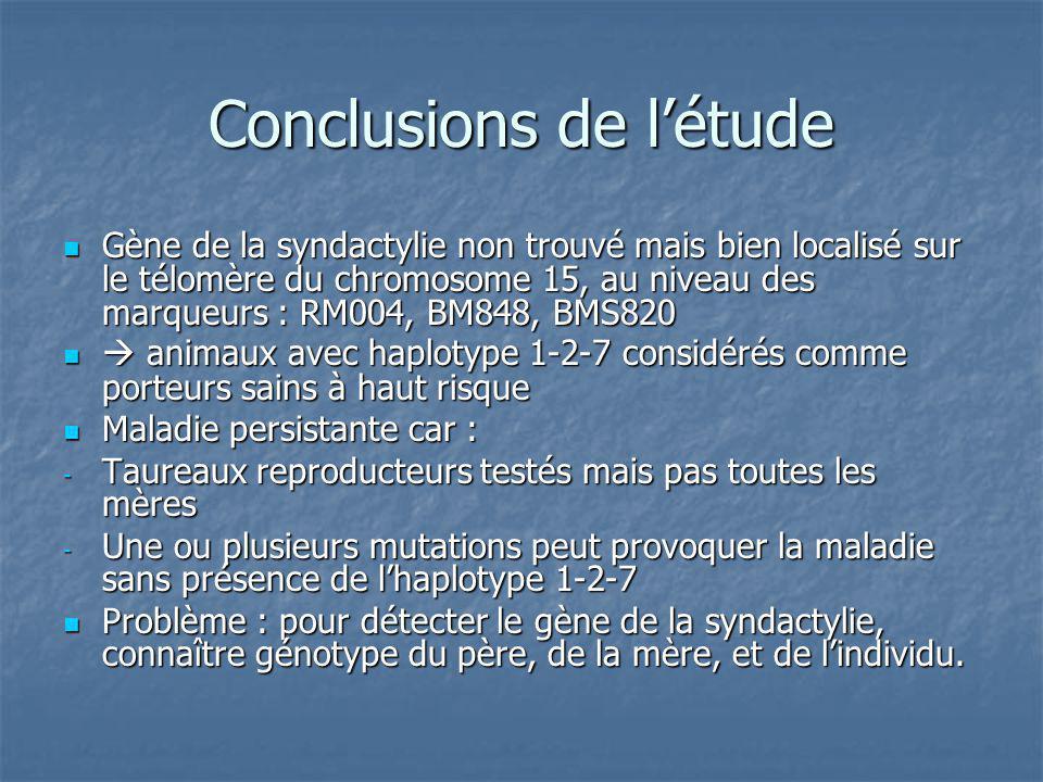 Conclusions de létude Gène de la syndactylie non trouvé mais bien localisé sur le télomère du chromosome 15, au niveau des marqueurs : RM004, BM848, B