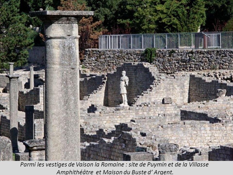 Vaison la Romaine vestiges et pont à arche unique sur l Ouvèze