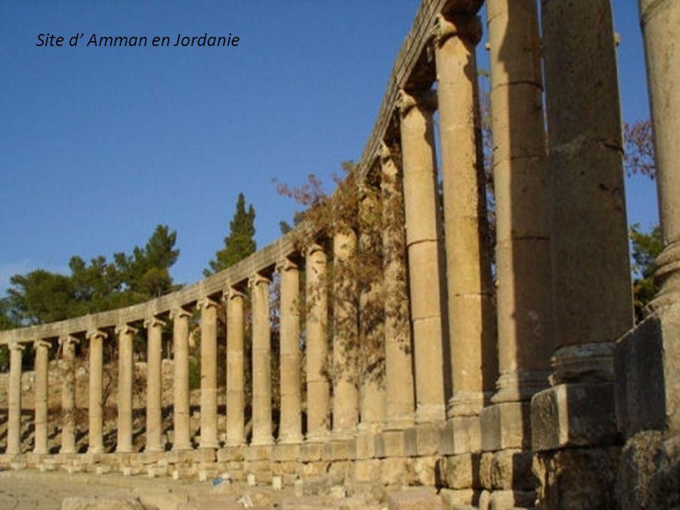 Ruines d Ephèse en Turquie (Agora, bibliothèque de Celsius)