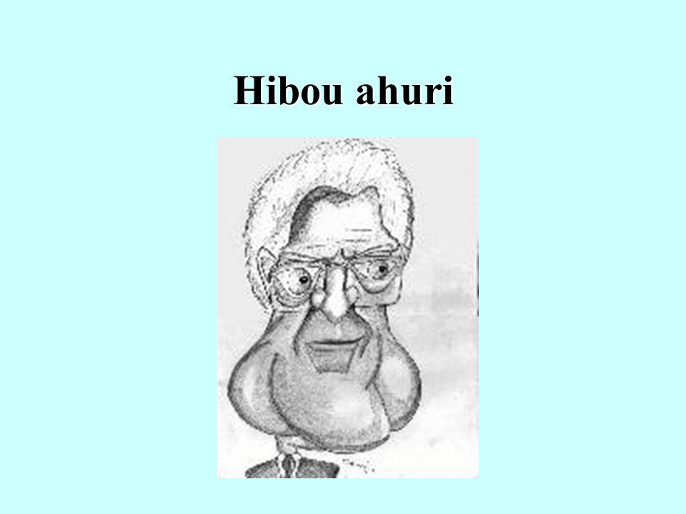 Hibou ahuri