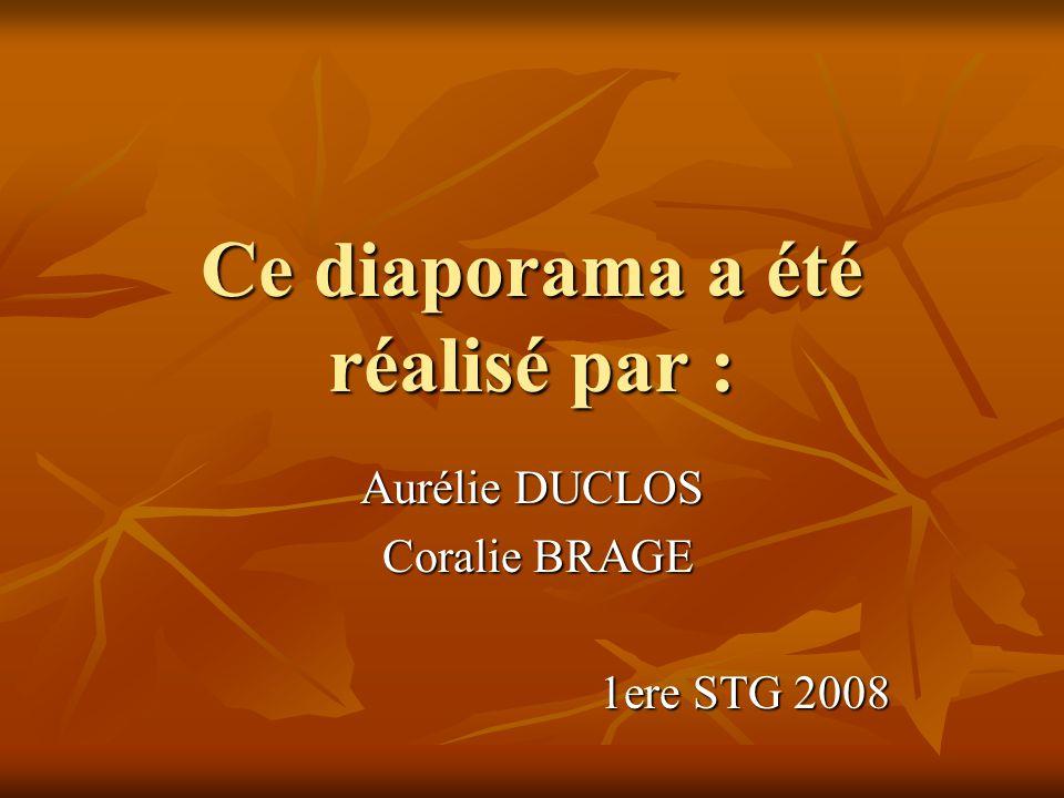Ce diaporama a été réalisé par : Aurélie DUCLOS Coralie BRAGE Coralie BRAGE 1ere STG 2008