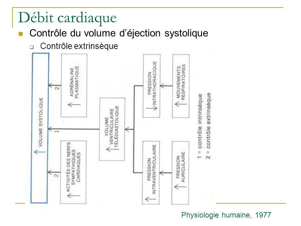Débit cardiaque Contrôle du volume déjection systolique Contrôle extrinsèque Physiologie humaine, 1977