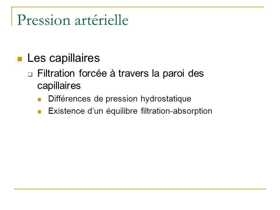 Pression artérielle Les capillaires Filtration forcée à travers la paroi des capillaires Différences de pression hydrostatique Existence dun équilibre filtration-absorption
