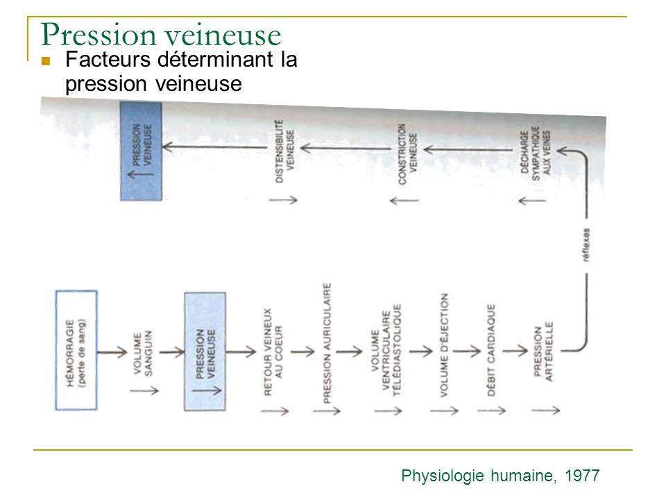 Pression veineuse Facteurs déterminant la pression veineuse Physiologie humaine, 1977