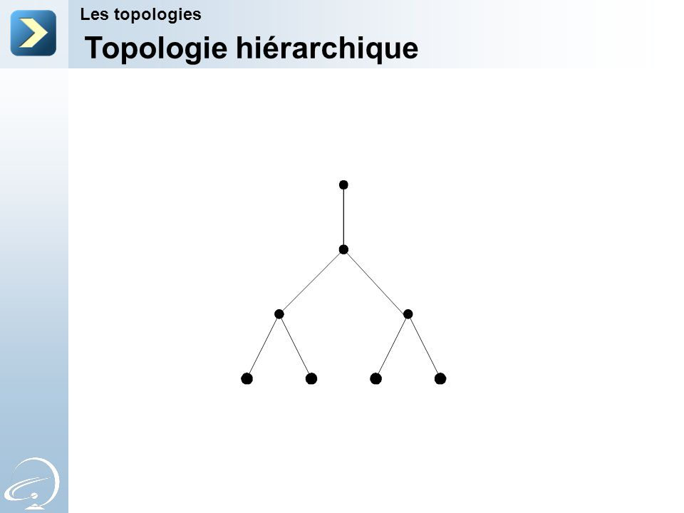Topologie hiérarchique Les topologies