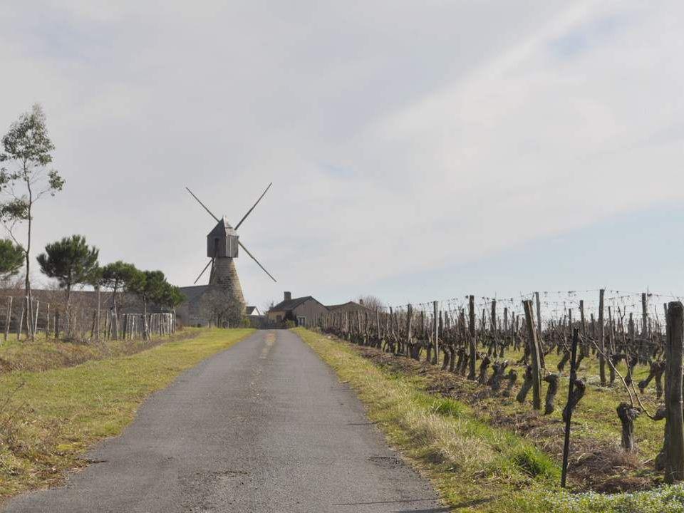 De quelle entrée prestigieuse ce rond-point nous offre-t-il la reproduction ? Il se situe entre Vihiers et Concourçon.