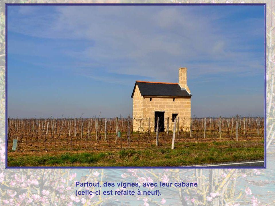 Ce moulin cavier daterait du XVIIe siècle ou du 1er quart du XVIIIe siècle. Il relevait du prieuré de St Hilaire de Concourson. Le cône du massereau e