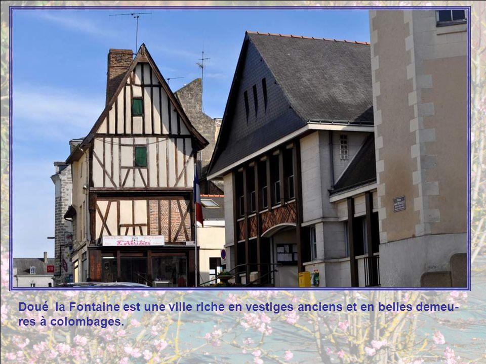 A lentrée de Doué-la-Fontaine, ce rond-point rappelle que la vil- le abrite un célèbre zoo, réputé, non seulement pour la variété des animaux présenté