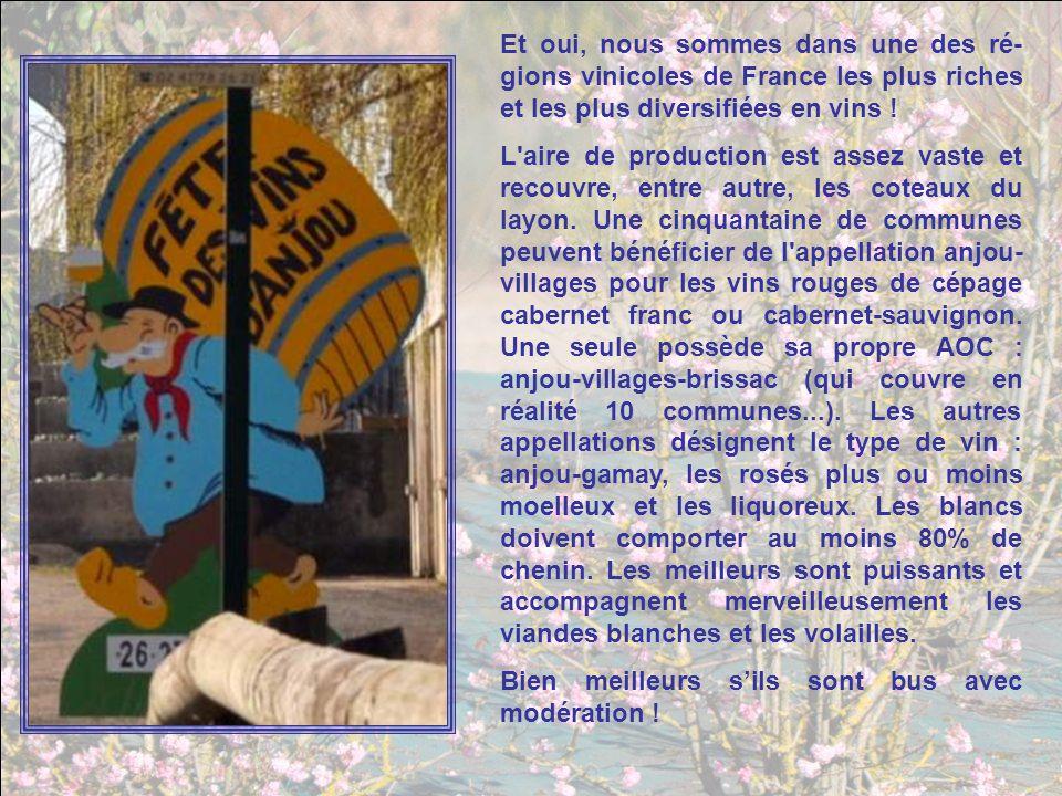 Photos : Yvonne Texte : Jacky Musique : François Devienne : sonate pour clarinette - andante Diaporama de Jacky Questel, ambassadrice de la Paix Jacky.questel@gmail.com http://jackydubearn.over-blog.com/ http://www.jackydubearn.fr/