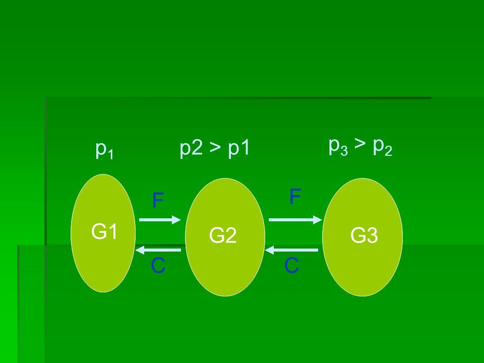 G1 p1p1 G2 p2 > p1 F C G3 p 3 > p 2 F C