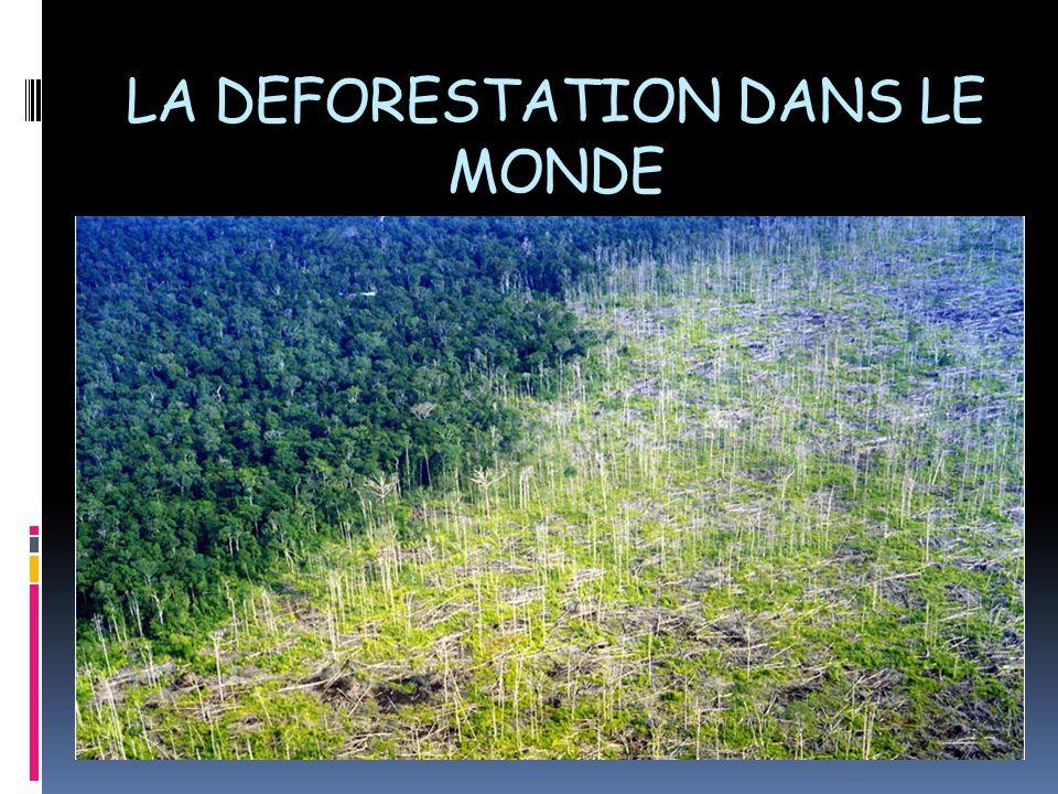 LA DEFORESTATION DANS LE MONDE