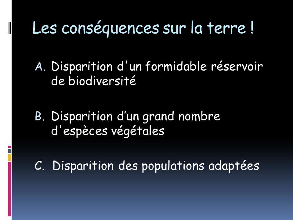 Les conséquences sur la terre ! A. Disparition d'un formidable réservoir de biodiversité B. Disparition dun grand nombre d'espèces végétales C. Dispar