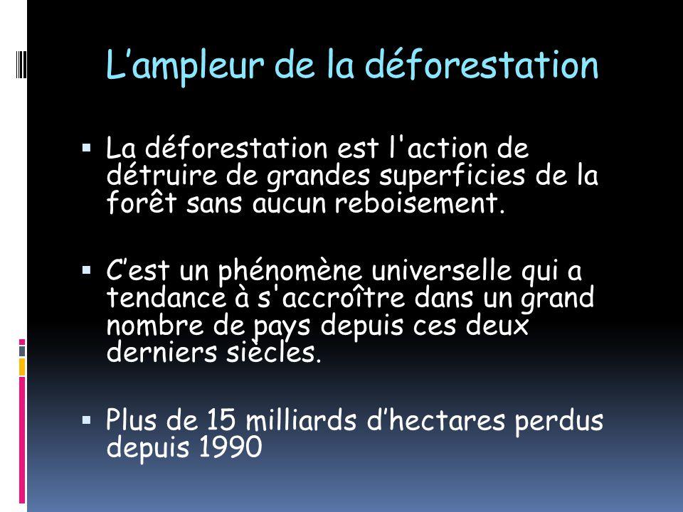 Lampleur de la déforestation La déforestation est l'action de détruire de grandes superficies de la forêt sans aucun reboisement. Cest un phénomène un