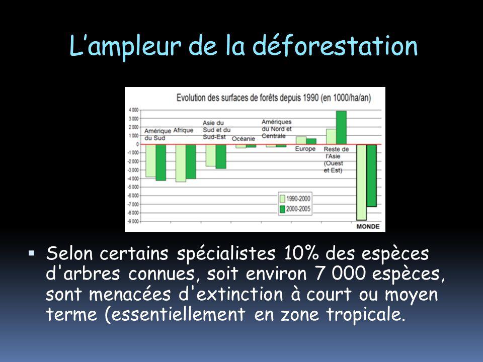 Lampleur de la déforestation Selon certains spécialistes 10% des espèces d'arbres connues, soit environ 7 000 espèces, sont menacées d'extinction à co