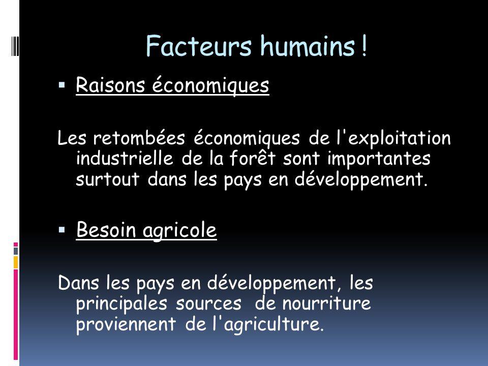 Facteurs humains ! Raisons économiques Les retombées économiques de l'exploitation industrielle de la forêt sont importantes surtout dans les pays en