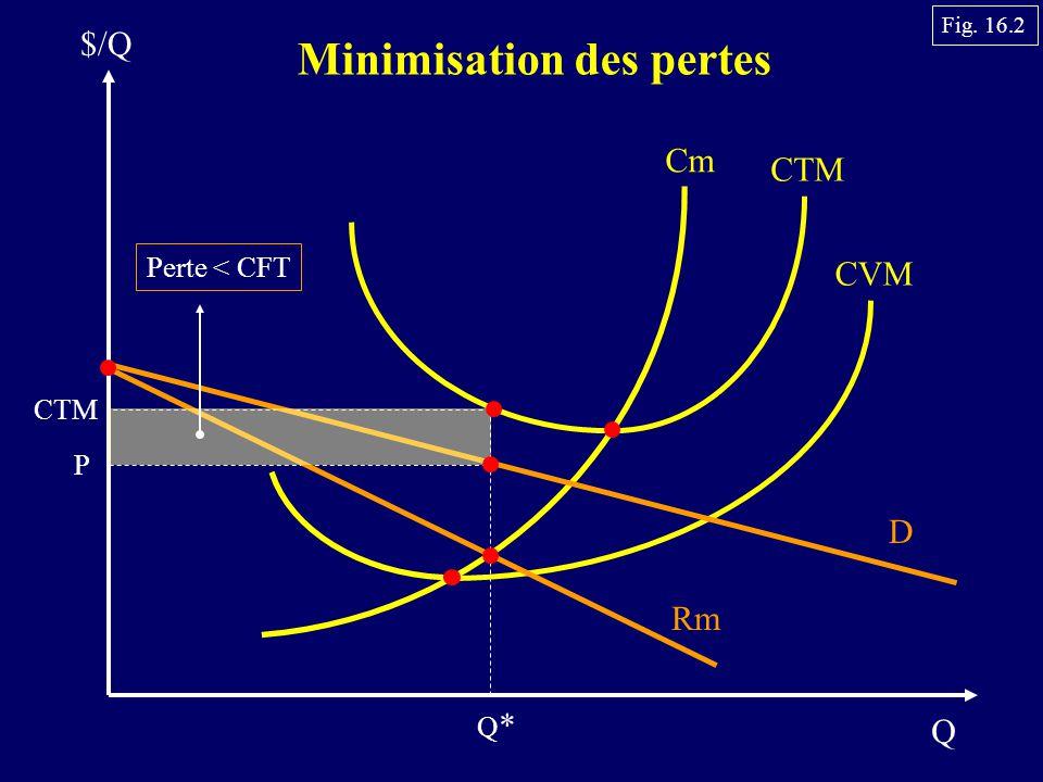 Q $/Q Minimisation des pertes Cm CTM CVM P D Rm Q*Q* CTM Perte < CFT Fig. 16.2