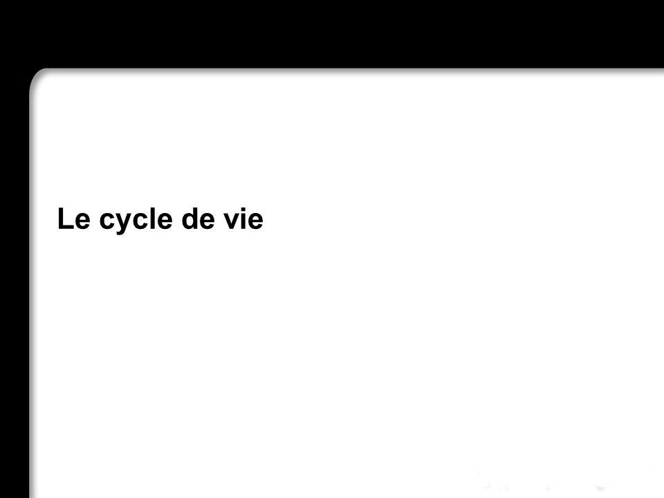 21/10/99Richard GrinJSF - page 20 Le cycle de vie