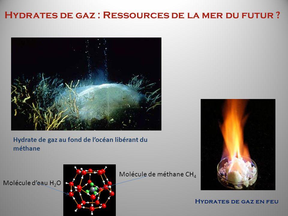 Hydrates de gaz : Ressources de la mer du futur ? Molécule de méthane CH 4 Molécule deau H 2 O Hydrates de gaz en feu Hydrate de gaz au fond de locéan
