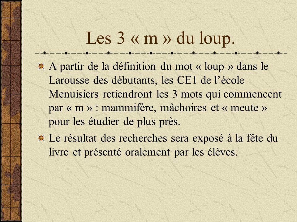 Les 3 « m » du loup. A partir de la définition du mot « loup » dans le Larousse des débutants, les CE1 de lécole Menuisiers retiendront les 3 mots qui