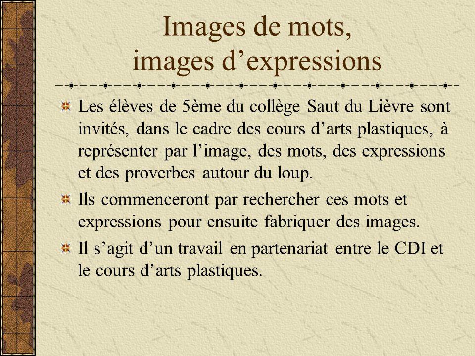 Images de mots, images dexpressions Les élèves de 5ème du collège Saut du Lièvre sont invités, dans le cadre des cours darts plastiques, à représenter