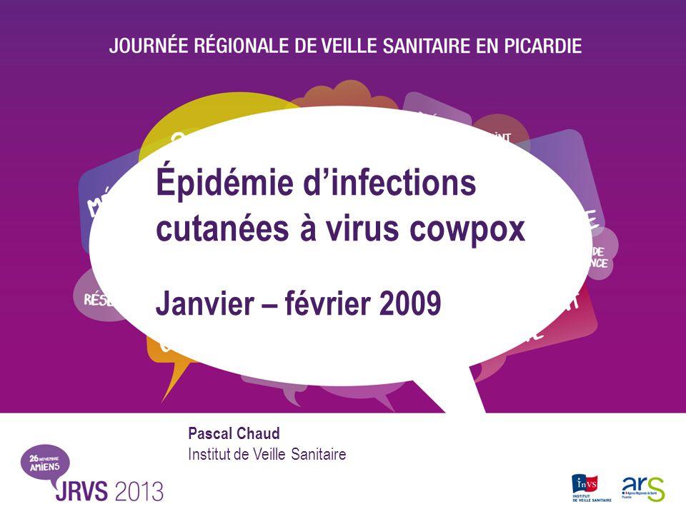 Épidémie dinfections cutanées à virus cowpox Janvier – février 2009 Pascal Chaud Institut de Veille Sanitaire