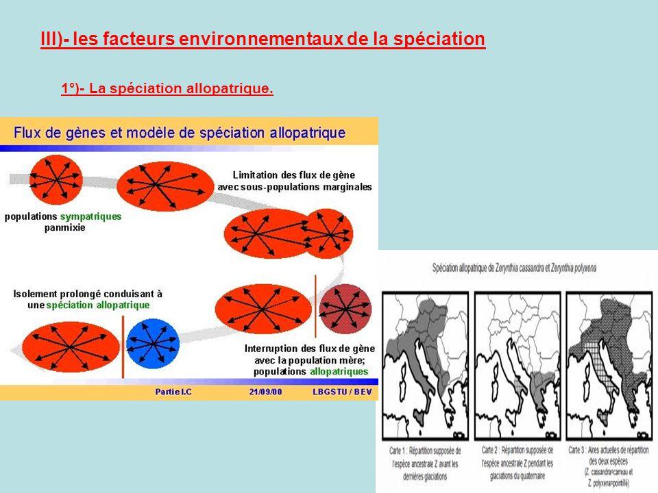 III)- les facteurs environnementaux de la spéciation 1°)- La spéciation allopatrique.