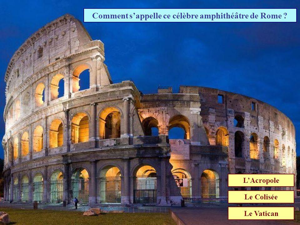 A qui se sont opposé les romains lors des guerres puniques ? Carthaginois Gaulois Macédoniens