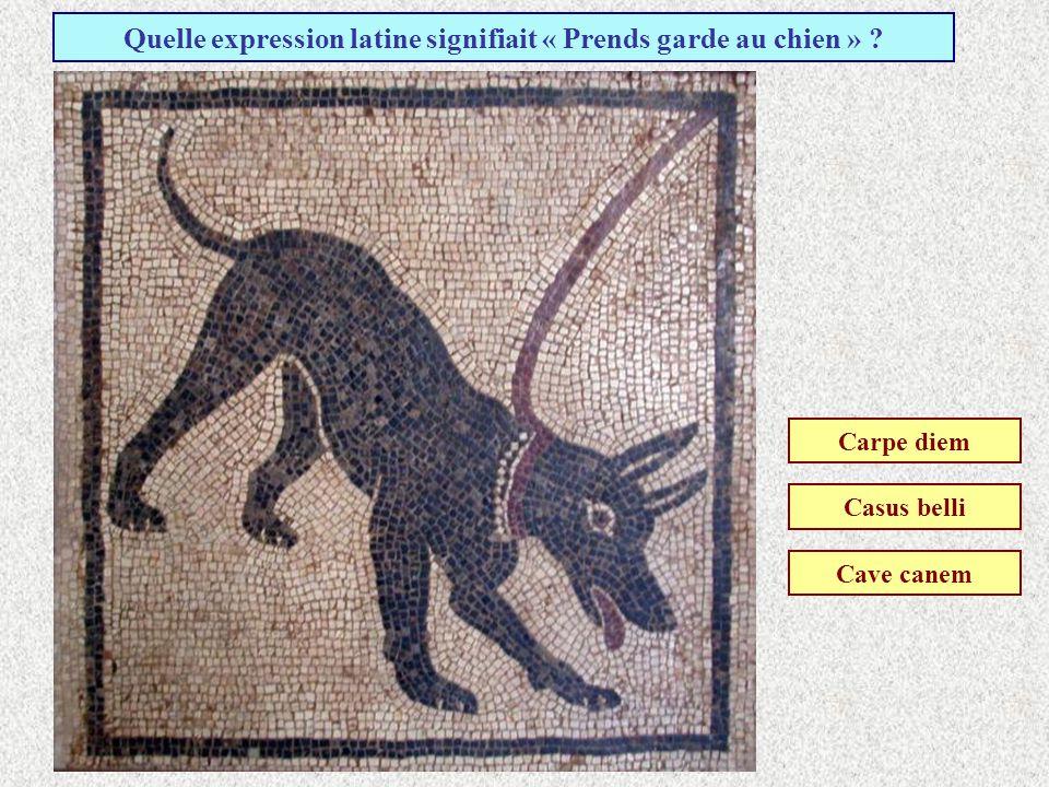 En quelle année a eu lieu léruption du Vésuve qui a détruit la ville de Pompéi ? 79 après J-C. 119 après J-C. 179 après J-C.