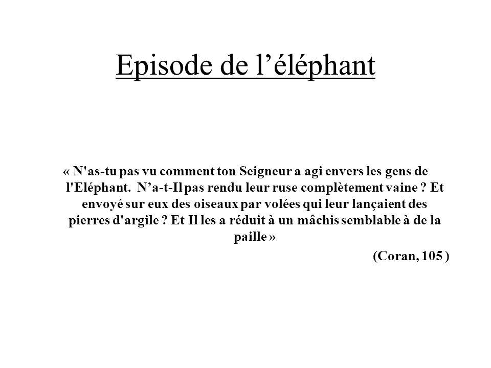 Episode de léléphant « N'as-tu pas vu comment ton Seigneur a agi envers les gens de l'Eléphant. Na-t-Il pas rendu leur ruse complètement vaine ? Et en