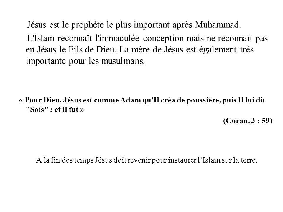 Jésus est le prophète le plus important après Muhammad. L'Islam reconnaît l'immaculée conception mais ne reconnaît pas en Jésus le Fils de Dieu. La mè