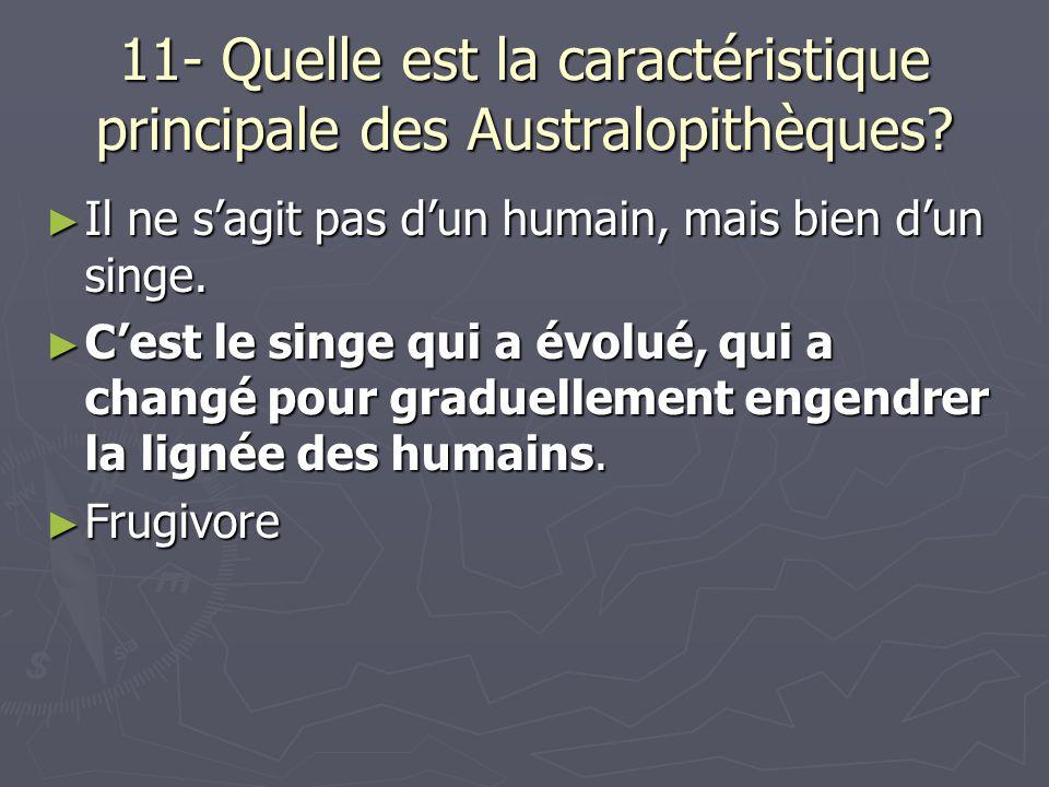 11- Quelle est la caractéristique principale des Australopithèques.