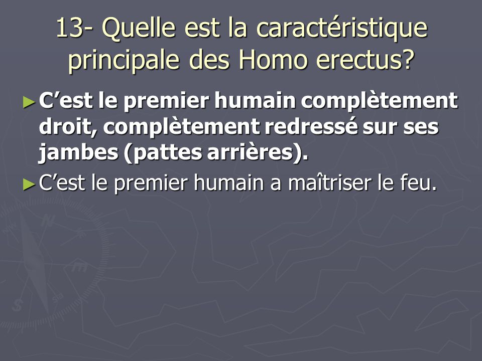 13- Quelle est la caractéristique principale des Homo erectus.