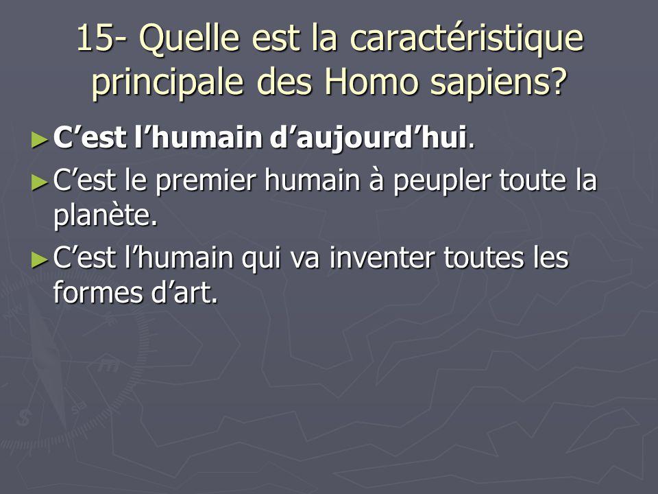 15- Quelle est la caractéristique principale des Homo sapiens.