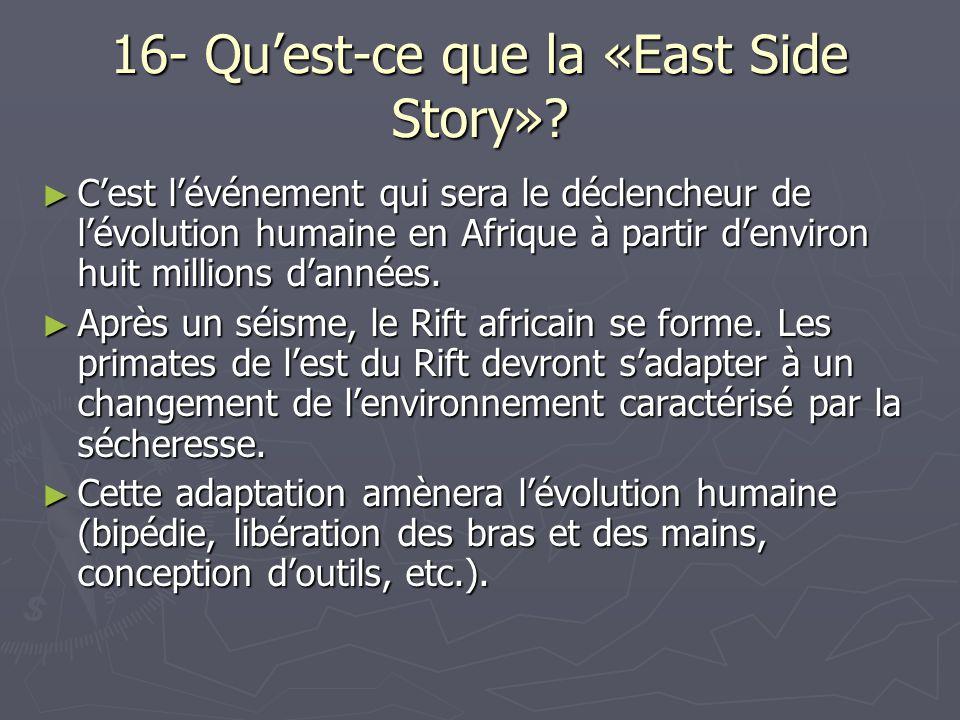 16- Quest-ce que la «East Side Story».
