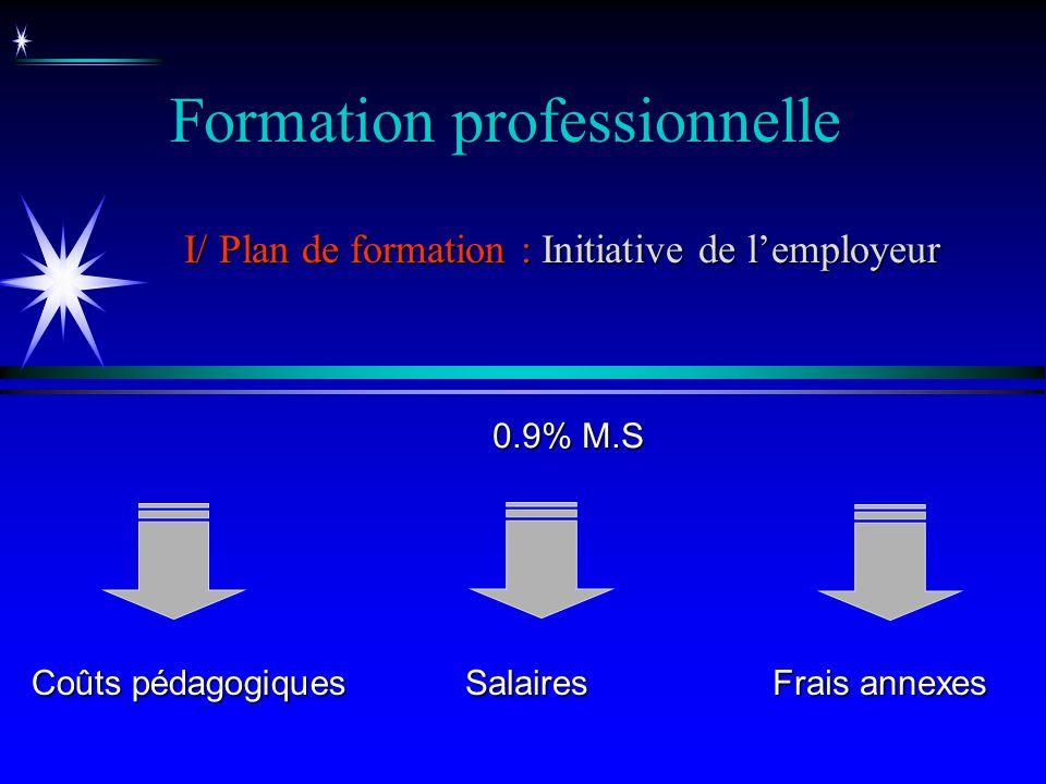 Salaires Coûts pédagogiques 0.9% M.S Formation professionnelle I/ Plan de formation : Initiative de lemployeur Frais annexes