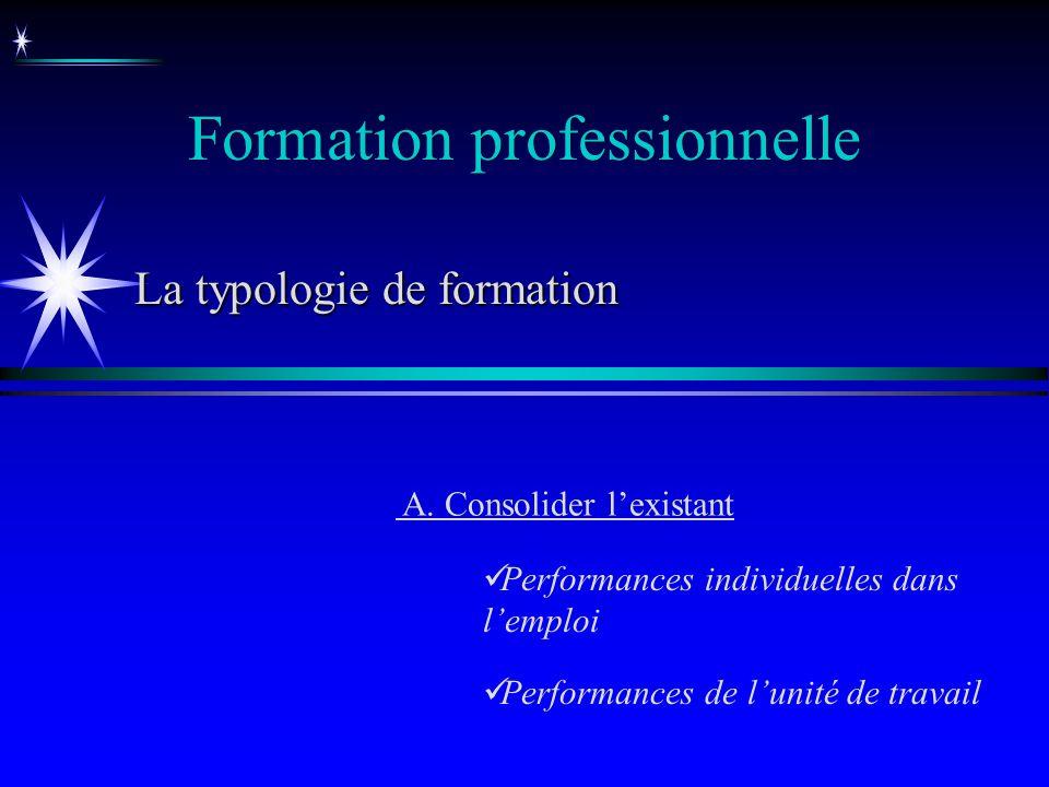 Formation professionnelle La typologie de formation A. Consolider lexistant Performances individuelles dans lemploi Performances de lunité de travail