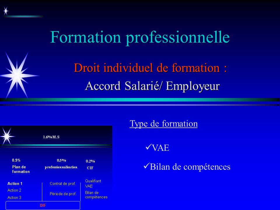 Formation professionnelle Bilan de compétences Droit individuel de formation : Accord Salarié/ Employeur Accord Salarié/ Employeur VAE Type de formati